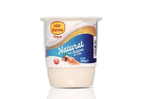 company-reina-yogur